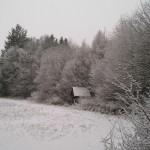 Zimní variace