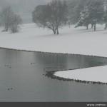 Vranov nad Dyjí - zima 2010